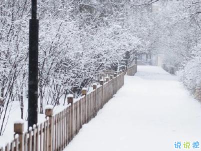 朋友圈晒雪景的句子带图片 下雪说说唯美简短配图12