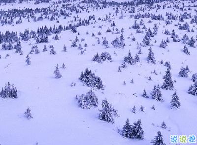 朋友圈晒雪景的句子带图片 下雪说说唯美简短配图2