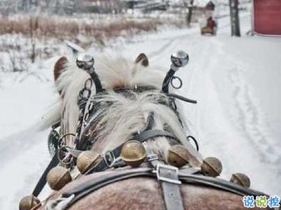 冬天下雪天文案唯美带图片 抖音最火下雪天说说8