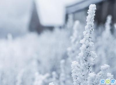 冬天下雪天文案唯美带图片 抖音最火下雪天说说1