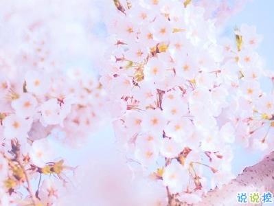 春天桃花盛开的说说带图片 赏花晒花的朋友圈文案11