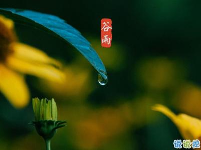 2020谷雨节气唯美说说配图 谷雨祝福唯美暖人心3