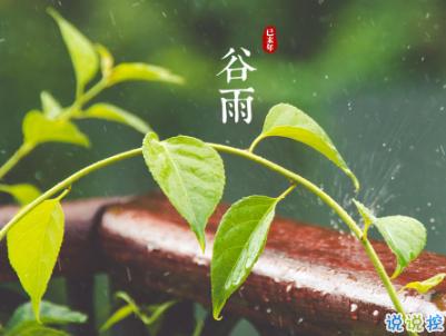 2020谷雨节气唯美说说配图 谷雨祝福唯美暖人心12