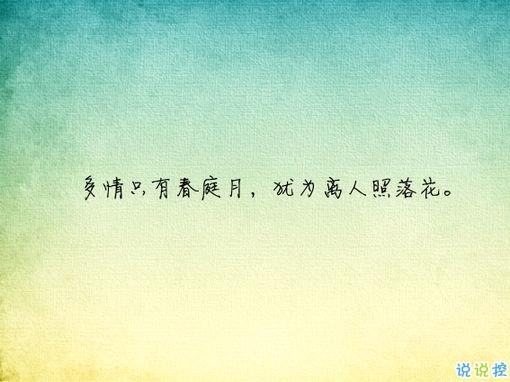 唯美有意境古诗句子带图片 写入心间的伤感诗句11