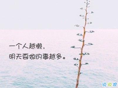 经典文艺短句子带图片 越努力越幸运14