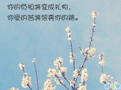 经典文艺短句子带图片 越努力越幸运13