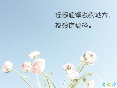 经典文艺短句子带图片 越努力越幸运10