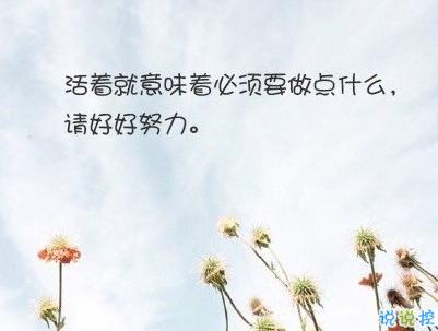 经典文艺短句子带图片 越努力越幸运9
